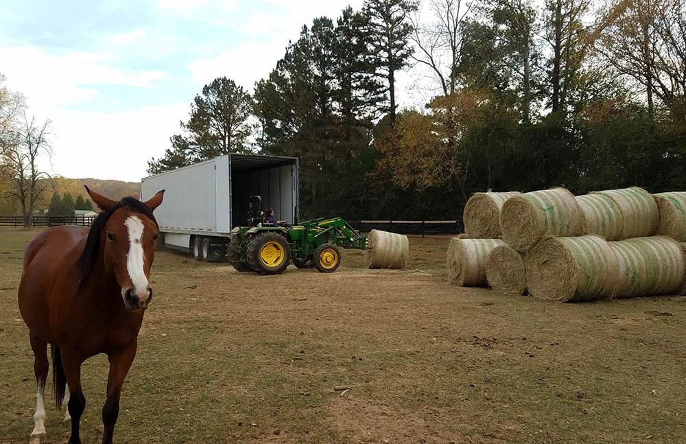 Unloading Hay Truck Last Winter